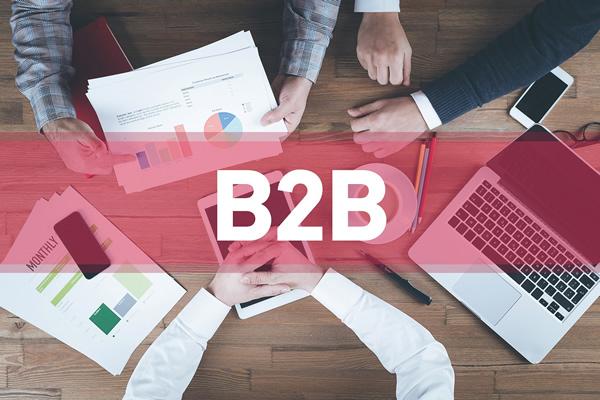 Desafíos Del Comercio Electrónico En Mercados B2B