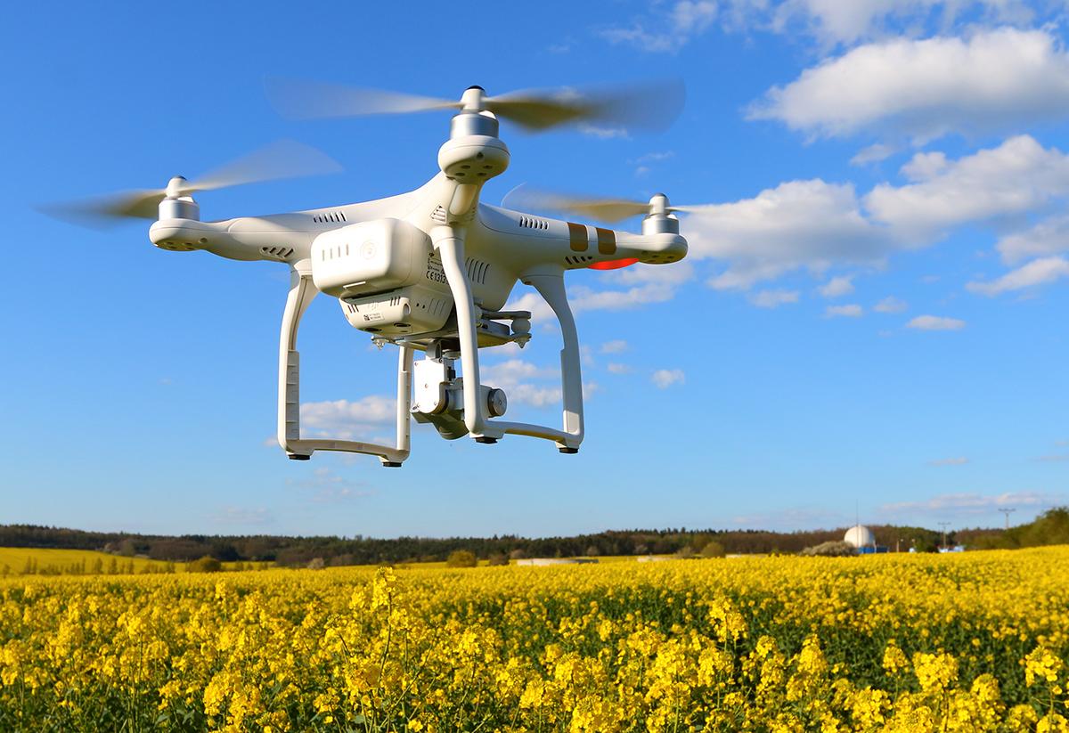 Nuevas Tecnologías En El Agro: 11 Tendencias Mundiales